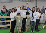 International Alpaca Show Wels (A) 2015